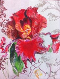 Iris rouge sur tissu, 35 x 26